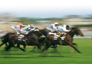 Les pronostiques des courses à Vincennes en février dans Paris hippiques course-300x209